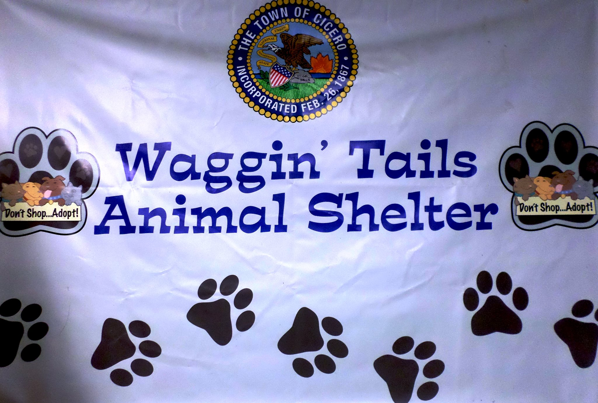 For the season 2019s last macfest, waggin wheels will be tagging along with plenty of adoptable pets
