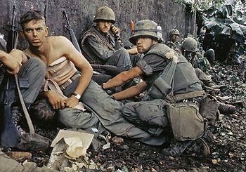 """""""Darker than Dark"""" new book on Vietnam"""